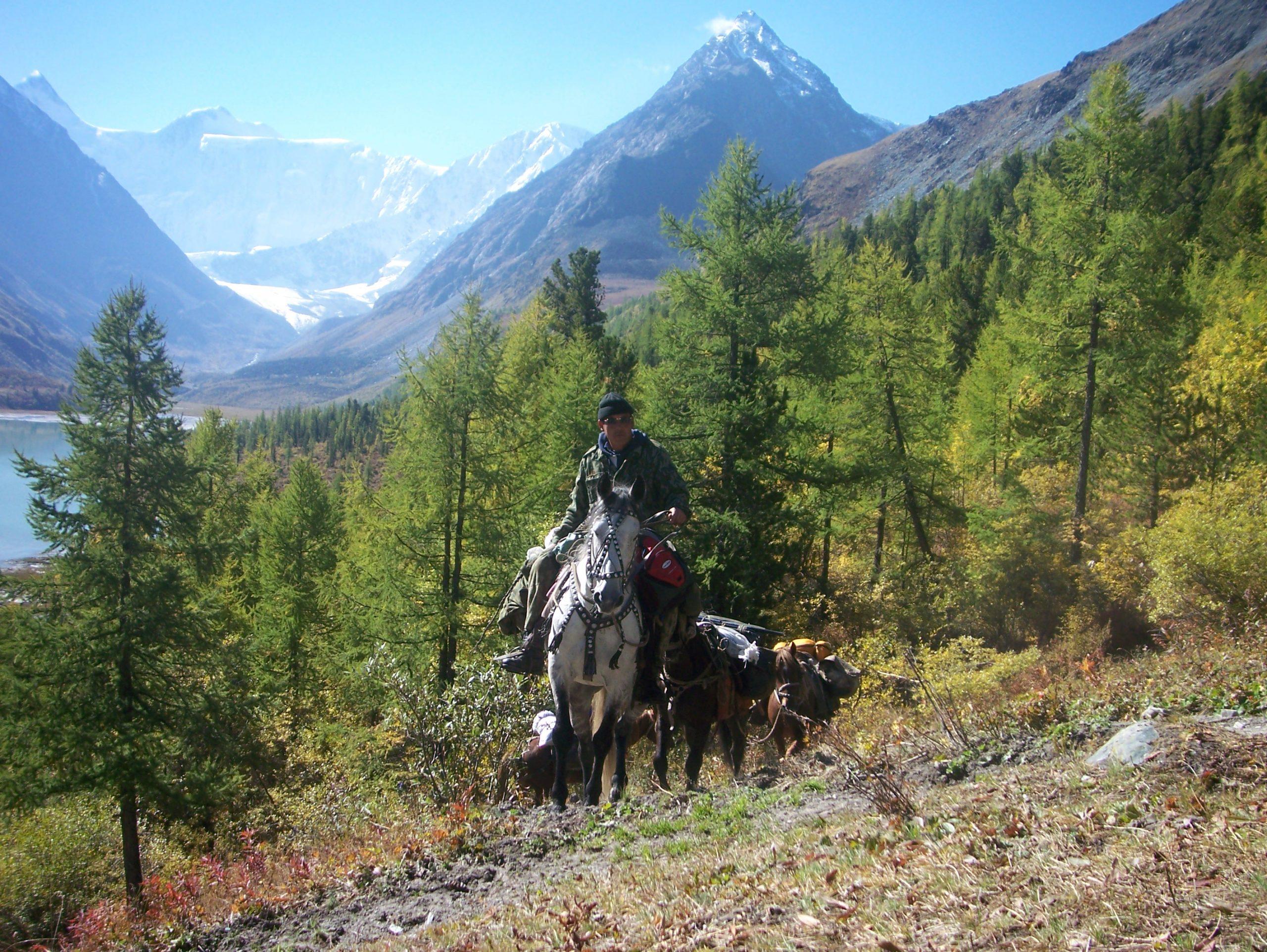 17-03 Altai Karachurek