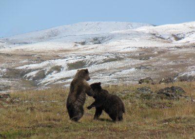 Trekking auf Kamtschatka
