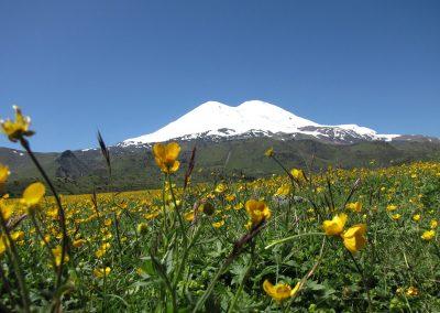 Elbrus vom Norden