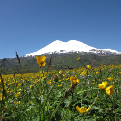Elbrus vom Norden Termin 16.06. – 29.06.2018, Reisepreis 1.580,-€