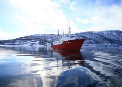 Skitouren in Nord-Norwegen vom Schiff